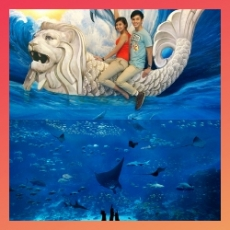 Native App – Special Bundle: S.E.A Aquarium + Trick Eye Museum Singapore